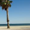 Locations avec vue mer à Sète